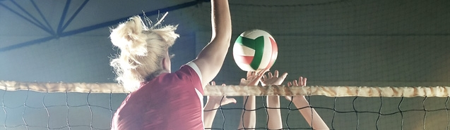 Header_Volleyball.jpg